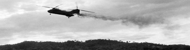 Vietnam Helicopter Game